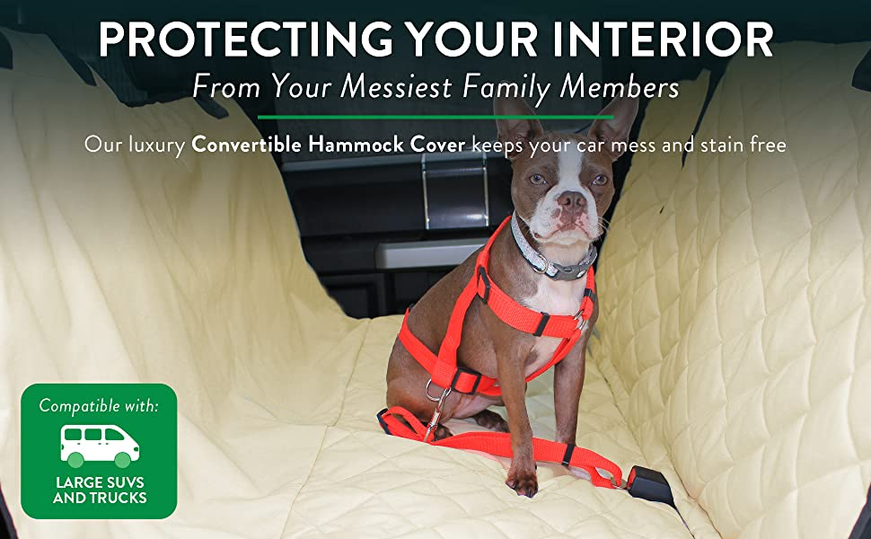 PROTECTING YOUR INTERIOR FROM YOUR MESSIEST FAMILY MEMBERS