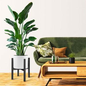 plant stands indoor wood