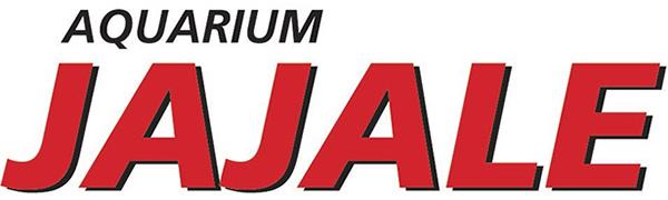 aquarium, aquarium supplies, fish tank, water pump, fish, pump, curved aquarium