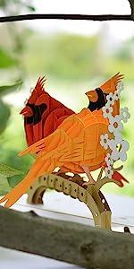 Cardinal Birds Mate Pop Up Card