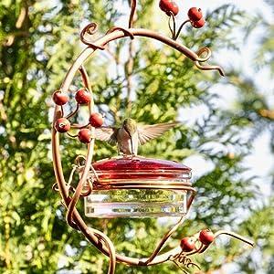 birdfeeder hanging