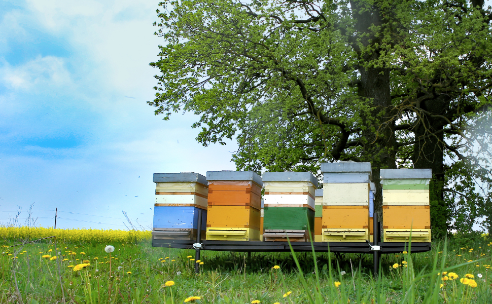 Beeswax Benefits