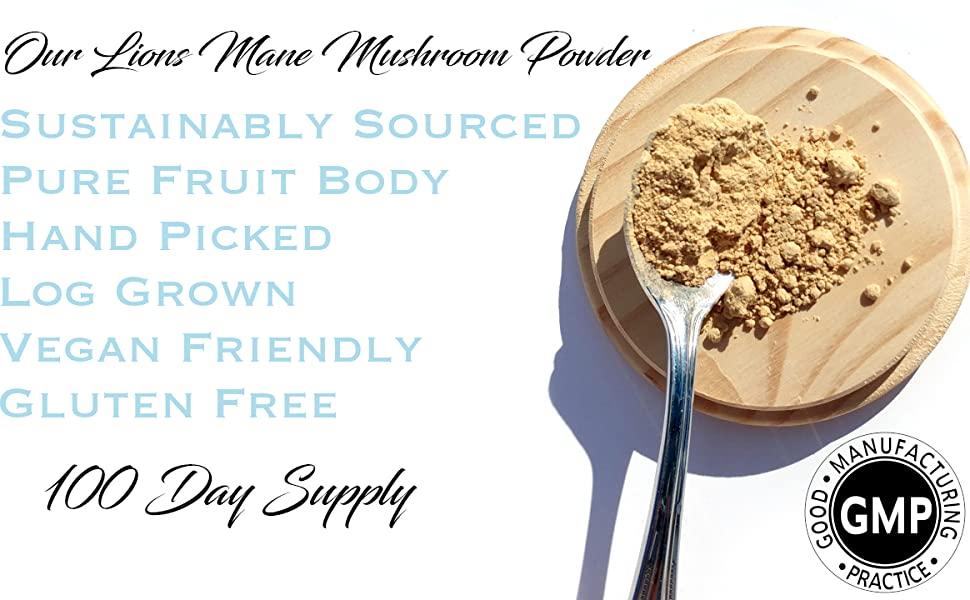 mushroom powder, lions mane powder, lions mane supplement