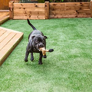 turf, fake grass, synthetic turf, synthetic grass, turf nails, turf spikes, turf stakes,