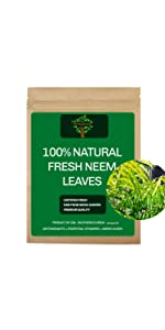 Fresh Neem Leaves, Fresh Neem Tea