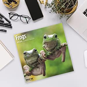 2020 Frogs Calendar!