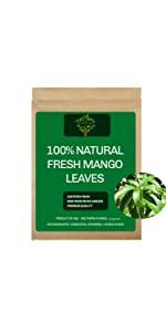 Fresh Mango Leaves, Fresh Mango Tea