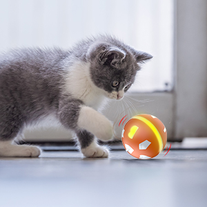 Colorful LED lights cat ball toy
