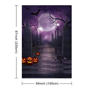 Halloween Photography Background
