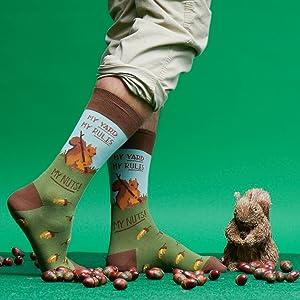 squirrel, nuts, yard, lawn, acorn, socks, mens