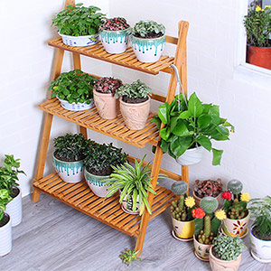 plant stand for multiple plants