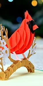 Cardinal Bird Pop Up Card