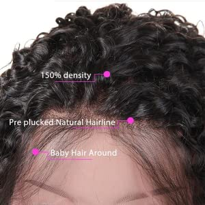 undetectable lace wigs human hair
