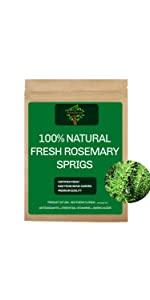 Fresh Rosemary Sprigs, Fresh Rosemary Branches