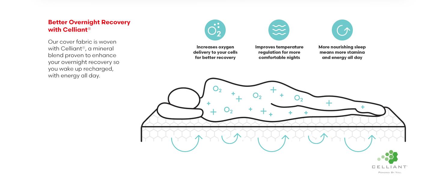 rivet mattres sleep free trial soft recovery memory foam celliant