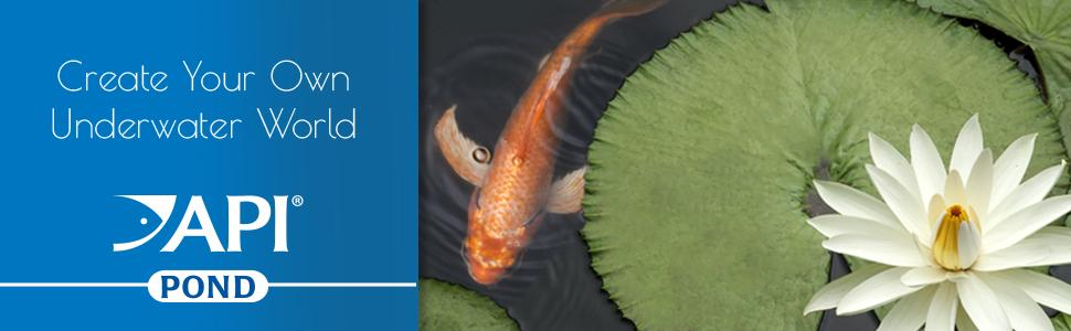 pond care fresh freshwater well tap water solution chemical supply product liquid treats gallons api