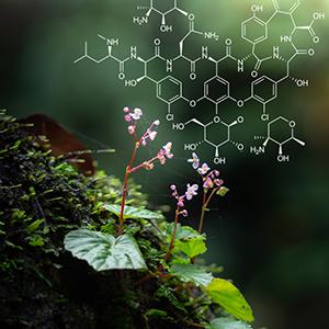 Chemistry & Nature