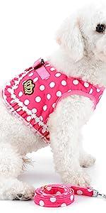dog harness girl pink
