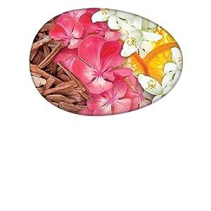 Caress Daily Silk Beauty Bar - Fragrances of White Peach and Orange Blossom