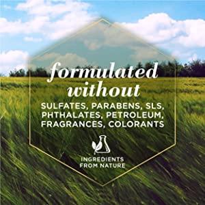 Burt's Bees, Pet, Dog, Shampoo, Conditioner, Natural, Rosemary, Chamomile, Cruelty Free