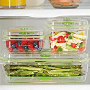 FoodSaver Fresh Containers Nestable and Stackable