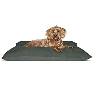 furhaven; in-use; throw pillow; cushion; dog