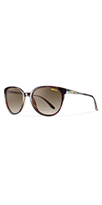 cheetah archive carbonic polarized uv protection