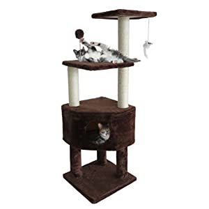 in use; cats; playing; cat tree