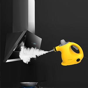 steam cleaner for tiles