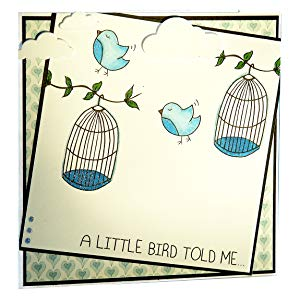 sparkle bird cage art