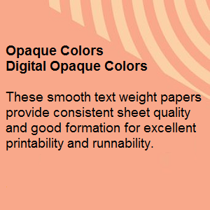 024044R 89gsm 11 x 17 printer paper Pastel Paper with Smooth Finish 1 Ream // 500 Sheets Springhill Blue Colored Paper 24lb Copy Paper