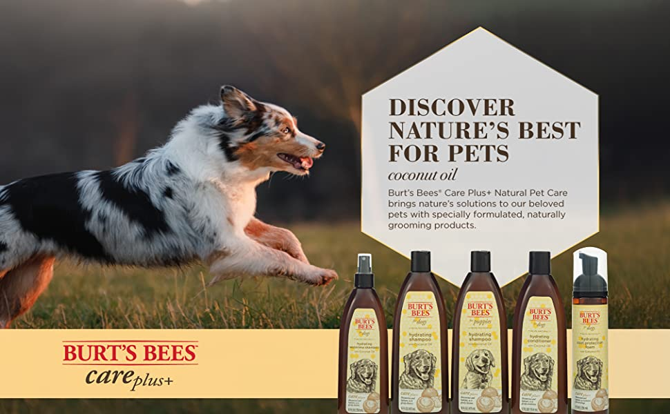 Burt's Bees, Pet, Dog, Shampoo, Conditioner, Natural, Coconut Oil, Cruelty Free, Hydrating