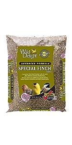 Wild Delight Special Finch