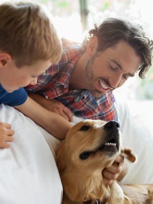 Father and son petting golden retriever in a bedroom