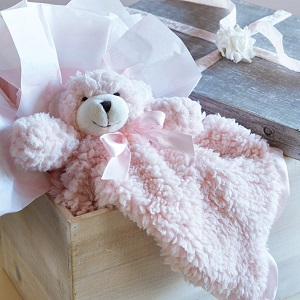 cuddle buds;cuddlebuds;washable stuffed animals;plush;security blanket;lovie;lovey;shower gift