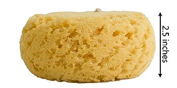 natural sea foam sponge body face exfoliate