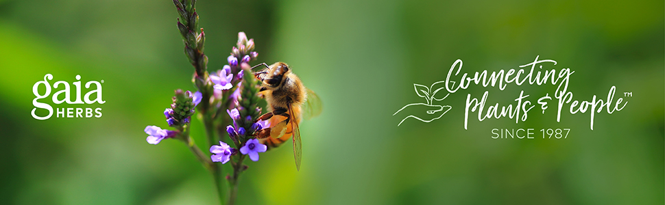 Gaia Herbs Banner Image - Bee on Blue Vervain Plant w/Connecting Plants & People Since 1987 logo