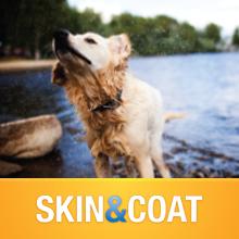 VetIQ Skin & Coat for Dogs