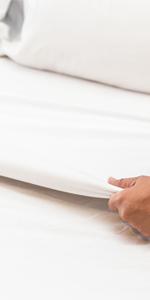 flat sheet