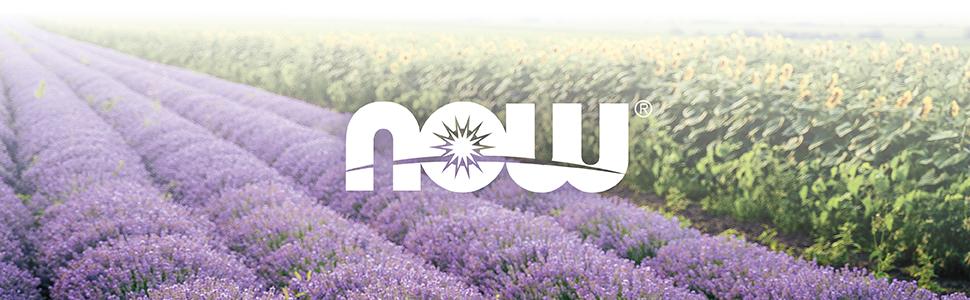 NOW, Lavender, Fields