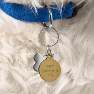 """dog with tags on collar that say """"Pet Dander"""""""