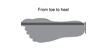How to measure our feet?  From toe to heel
