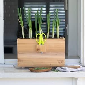 homegrown window box