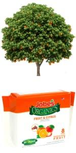 Outdoor citrus fruit tree fertilizer spikes