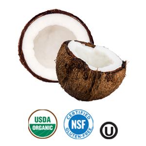 USDA Organic Gluten Free Organic Refined Coconut Oil BetterBody Foods
