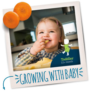 As your toddler grows, they need the right nutrition for healthy growth and development.