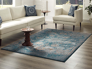 living room,bedroom,entryway,kitchen,dining room,contemporary modern,non-shedding area,rug