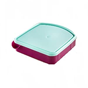 Leak proof container for lunchbox