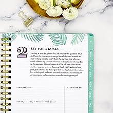 blue sky planner, the day designer system, close up of step 2, palm leaf design, calming green color