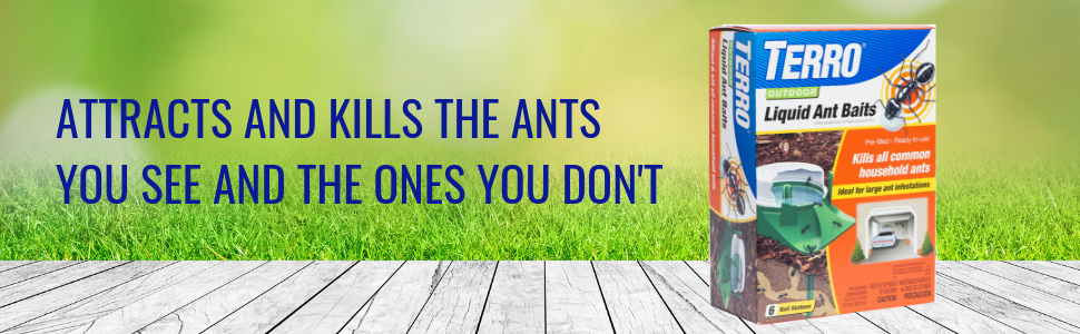 ant bait, ant killer, ant control, terro, kill bugs, insect cotrol, spiders, ants, roaches
